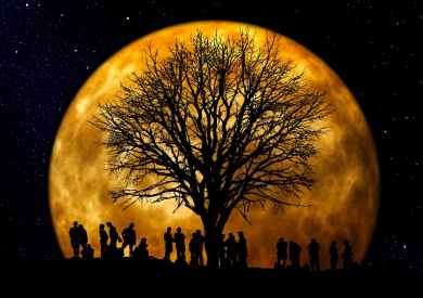 silhouette of people standing neat tree under the moon
